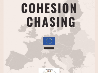 Cohesion chasing - results